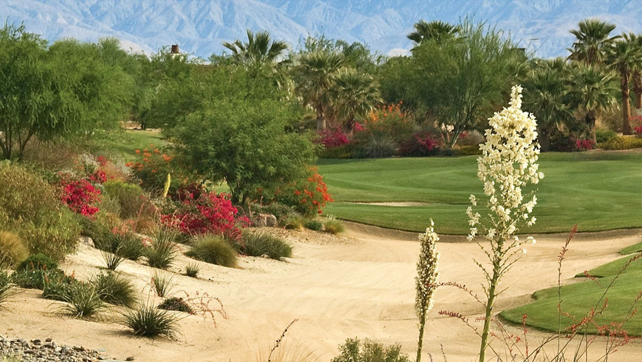 Golf Course Turf Reductions
